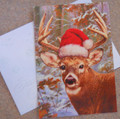 Leanin Tree CHRISTMAS CARDS - 10 Box - Whitetail Buck Deer In Santa Hat