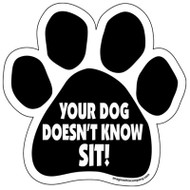 Your Dog Doesn't Know Sit! Paw Magnet