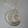 Sea Shell and Stick Fresh Water Pearl Necklace