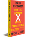 BIG DISCONNECT - Paperback