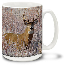 Whitetail Buck on a winters morning.