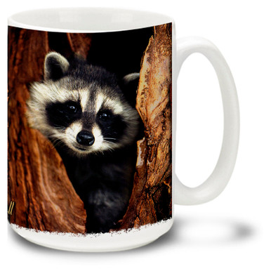 Cute Raccoon in a tree.