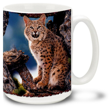 Big beautiful Bobcat against a scenic background.