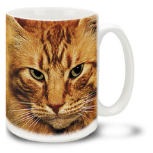 Pumpkin Cat - 15oz. Cat Mug