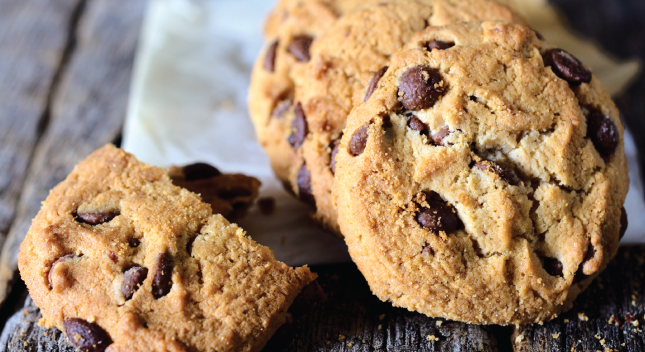 Shiloh Farms Gluten Free Chocolate Chip Cookies