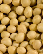 Yellow Soybeans, Organic 15 oz