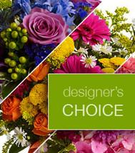 Designer's Choice - Blow Their Mind!