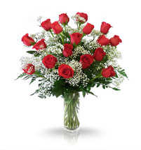 18 Radiant Red Roses by Dragonfly Flowers of Winnipeg