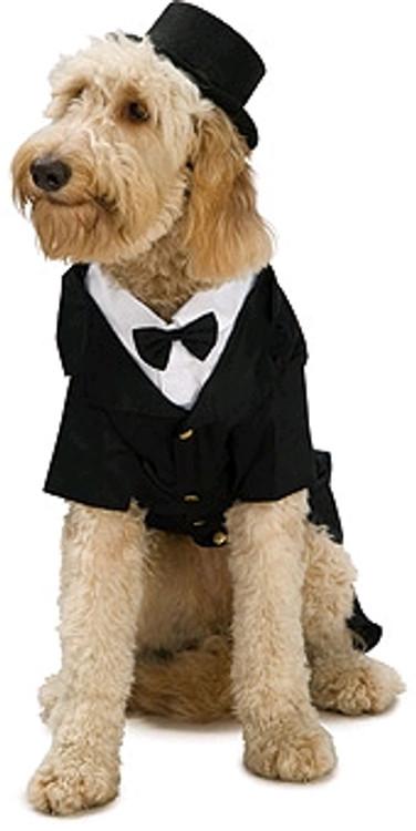 Dapper Dog Tails Pet Costume