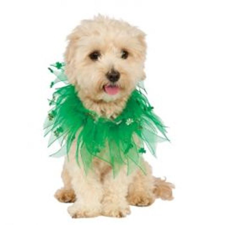 St Patricks Pet Costume
