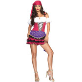 Gypsy Crystal Ball Beauty Womens Costume