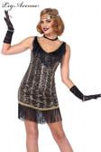 Flapper 1920s Charleston Charmer Dress