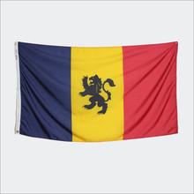 ΔKE 3' x 5' Flag