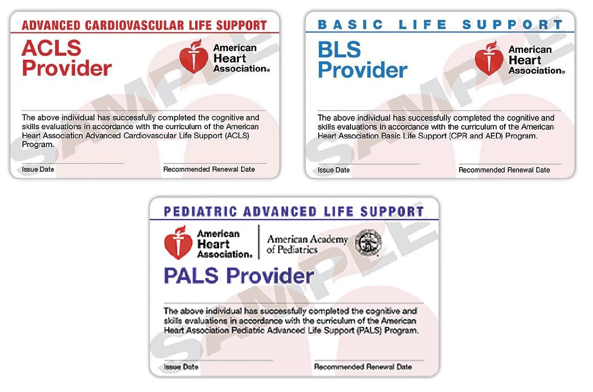 Educational critical care concepts 2015 cards allg american heart association certification ecards received immediately following xflitez Images