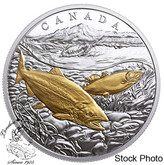 Canada: 2017 $20 From Sea To Sea To Sea: Pacific Salmon Gold Plated Pure Silver Coin