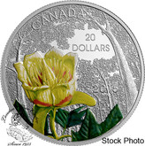 Canada: 2015 $20 Forests of Canada: Carolinian Tulip-Tree Silver Coin