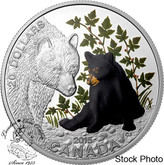 Canada: 2015 $20 Baby Animals: Black Bear Silver Coin