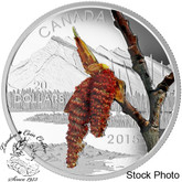 Canada: 2015 $20 Forests of Canada: Boreal Balsam Poplar Silver Coin