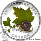 Canada: 2016 $20 Little Creatures: Snail Silver Coin