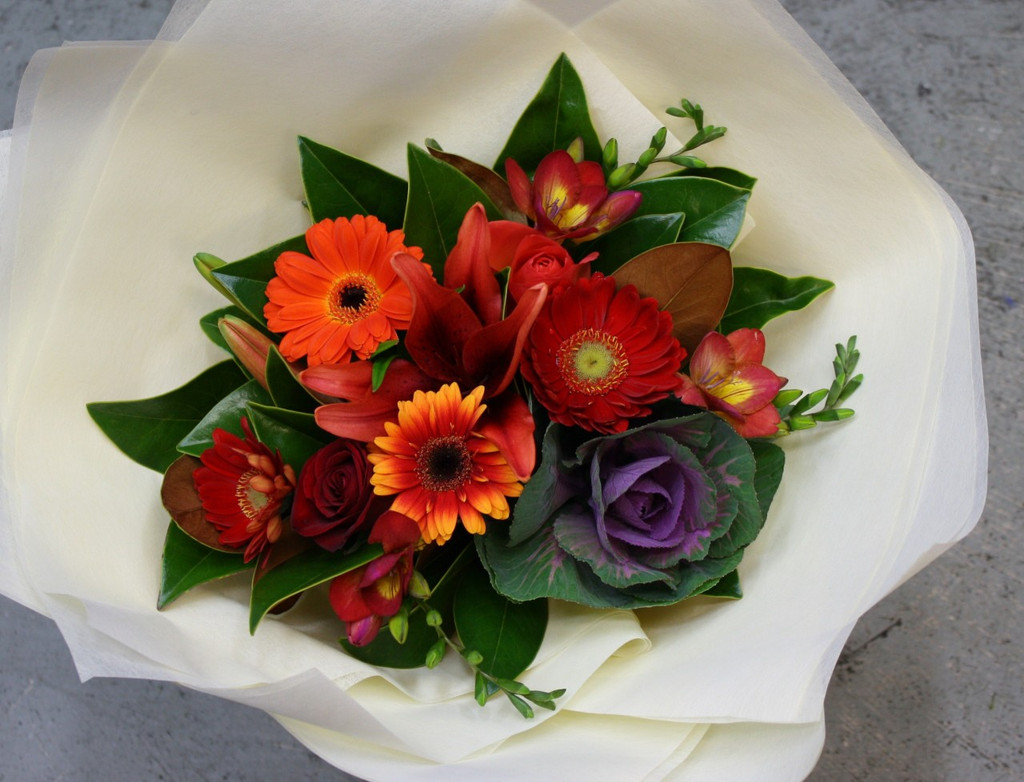 Geberas, lilies,freesia, roses and kale this high contrast bouquet is good for anyone who likes rich passionate colours
