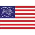 3' x 5' General Fremont Flag