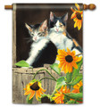 Calico Kitties