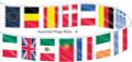 30' International Pennants