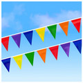 105' Multi Color Pennants