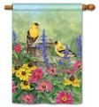 Garden Finches Banner