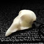 Quail skull, marble