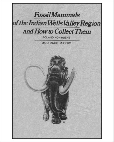 "Fossil Mammals of  theIndian Wells Valley Region and How to Collect Them by Roland Von Huene (Pamphlet)   ""If you are one of the people who love to wander through the back reaches of the desert areas and far off the beaten path, you just might some day come across a fossil. If you did that, would you know what it was, how it got there, and what you should do about it?""   ""In this pamphlet we get a brief look back through thous ands and millions of years to the strange and fascinating animals that long ago prowled the region: the sheep-sized three-toed horse; the elephant-like mastodon; such predators as the saber-toothed cats and hyaenoid dogs; and the vegetarians - the camelids, rhinoceroses and pronghorn deer.""    19 pages includes table of contents, photos, maps and drawing of animals."