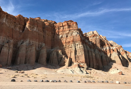 Field Trip - Red Rock Canyon and more - March 17, 2018