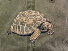 Hat - Tortoise