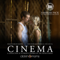 Cinema Presets Sampler (LR & ACR)