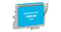 Epson T060220