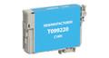 Epson T099220