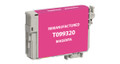 Epson T099320