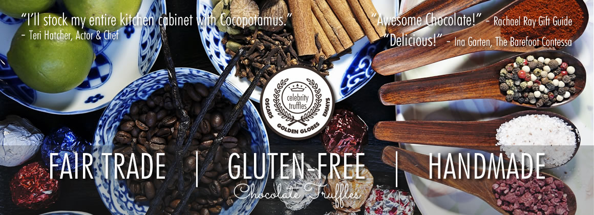 best gluten-free chocolate truffles using only fair trade chocolate and gluten-free ingredients