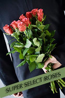 Black Tie Roses: SUPER SELECT Roses