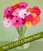 Daisies Bouquet: Buy 12 Get 18