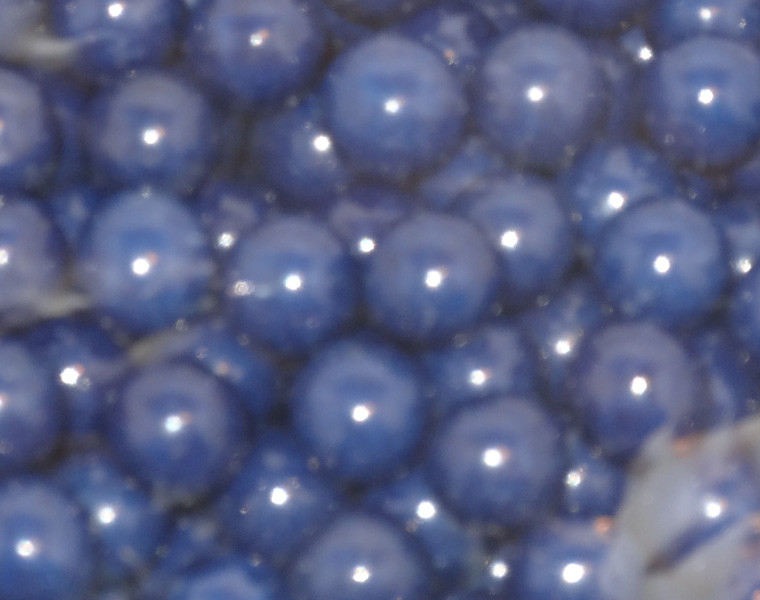 Sixlets - Navy Blue, by Sixlets,  and more Confectionery at The Professors Online Lolly Shop. (Image Number :5047)
