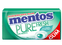 Mentos Sugar Free Gum - Pure Fresh - Spearmint (29g tin x 12pc display unit)