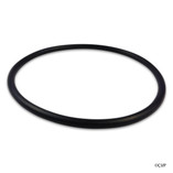 ALADDIN | WHISPER FLO PUMP LID O-RING | TRITON DOME | VALVE ADAPTER 6"