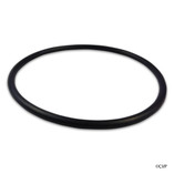 ALADDIN | PENTAIR FNS TANK O-RING | SEAL FNS TANK | 195008 | O-420-9
