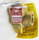 "PENTAIR | P32976 VALVE RELIEF 3/4"" 50# MINIMAX 
