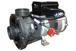 Gecko Alliance | PUMP |  1.0HP 115V 60HZ 1-SPEED FMCP | 02510000-1010