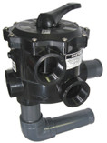 PENTAIR | VALVE ASSY., MULTI-PORT 2"