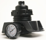 WATERWAY | Pressure Relief Valve Assembly | 550-4230