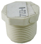 "RICHARDSON | PLUG, 3/4"" MPT 