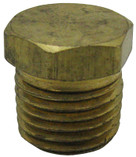 "PENTAIR | 1/4"" PIPE PLUG BRASS 